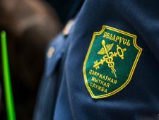 Калининградские компании намерены в белорусском суде решить спор о конфискованной технике - Новости таможни