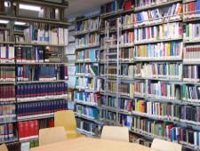 В школах Украины вместо Толстого и Достоевского будут изучать современные бестселлеры