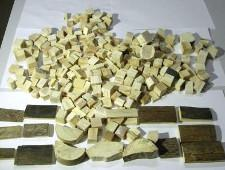 Благовещенские таможенники задержали фрагменты бивней мамонта - Криминал