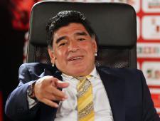 Диего Марадона стал председателем правления футбольного клуба «Динамо-Брест» - Экономика и общество