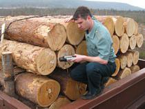 В 2008 году увеличилось число уголовных дел, связанных с контрабандой леса, наркотиков и ширпотреба - Кримимнал - TKS.RU