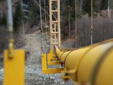 Президент Болгарии заявил о необходимости прямых поставок российского газа - Новости таможни