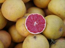 Собственник грейпфрутов из Мексики оштрафован