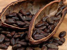 Какао-бобы не прошли фитосанитарный контроль