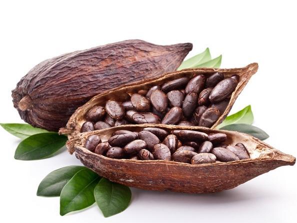 ЕЭК продлила до конца 2019 г. нулевую пошлину на ввоз какао-продуктов