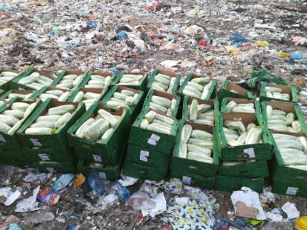 В Тюмени изъяты и уничтожены санкционные овощи - Криминал