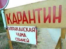 Карантин по АЧС снят со второго села Омской области - Обзор прессы