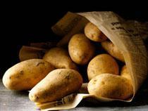 Сегодня вступает в силу запрет на ввоз украинского картофеля в Россию - TKS.RU