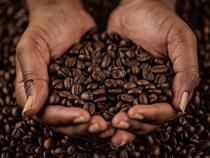 В Абакане изъят кофе с признаками незаконного использования известного товарного знака