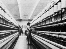 Запрет на экспорт кожевенного сырья продлят еще на полгода - Новости таможни
