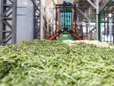 «Молвест» начнет экспорт премиум кормов уже этим летом - Обзор прессы - TKS.RU