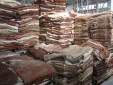 Кабмин продлил запрет на вывоз кожевенного полуфабриката на полгода
