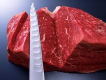 Россельхознадзор назвал страны, которые готовы поставлять мясо в РФ - Новости таможни