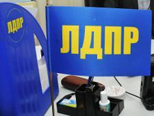 В ЛДПР объяснили, как в отчеты кандидатов попала строка на девок румяных
