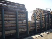 Вниманию лиц, осуществляющих экспорт лесоматериалов