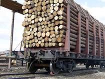 В лидерах экспорта Верхневолжья – продукция деревообрабатывающей промышленности
