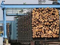 Находкинские таможенники задержали крупную партию леса, вывозимую обманным путем - Кримимнал - TKS.RU