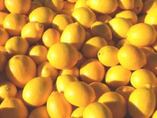 Владивостокская таможня выявила более полтонны незадекларированных лимонов - Криминал