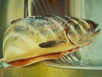 Предприятия аквакультуры получат новые ветеринарные правила - Новости таможни - TKS.RU