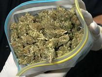 Уральские таможенники задержали более 4 килограммов марихуаны
