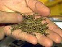 Таможенники обнаружили марихуану в коробке из-под молока