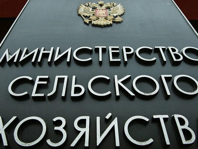 Минсельхоз считает, что России не хватает собственного хмеля - Новости таможни