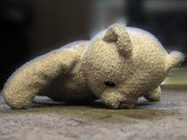 Мишки детям не игрушки  - Криминал