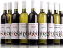 Молдавские винзаводы возобновят поставки вина в Россию