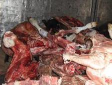 900 кг казахстанской конины задержаны из-за нарушений условий транспортировки - Кримимнал - TKS.RU