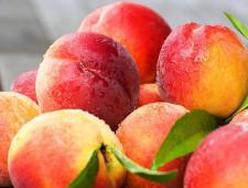 Десятки тонн турецких фруктов ввезены в Ивановскую область - Новости таможни