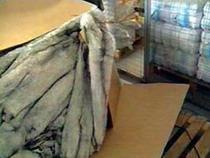 Таможенники пресекли контрабандный ввоз в РФ одежды на 4 млн рублей - Кримимнал - TKS.RU