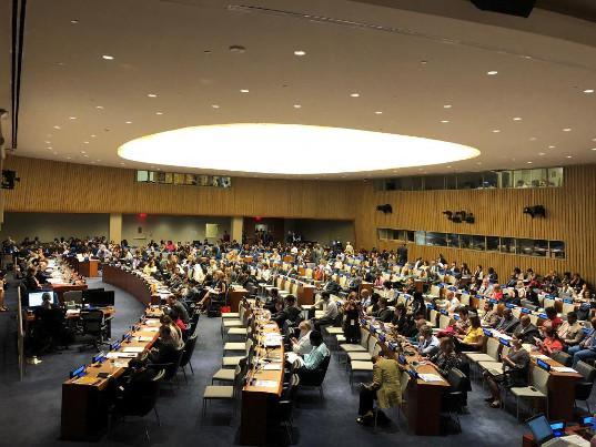 ЕЭК презентовала в ООН опыт и наработки в области устойчивого развития - Новости таможни