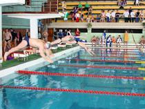 На Алтае завершился чемпионат таможенников Сибири по плаванию - Новости таможни - TKS.RU