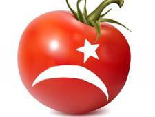Дворкович считает преждевременным обсуждение сроков снятия запрета на ввоз томатов из Турции