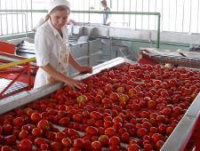 Россельхознадзор не смог провести инспекцию семи белорусских предприятий - Обзор прессы