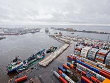 Россельхознадзору предстоит определить содержимое 5 контейнеров, задержанных в порту