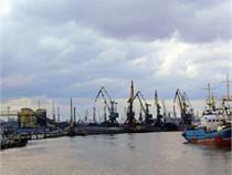 Показатели порта Калининград растут за счет перевалки рыбы - Логистика