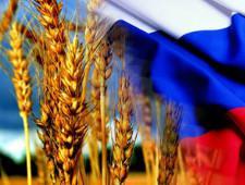 В Турции объяснили ввод пошлины на импорт российской пшеницы - Новости таможни - TKS.RU