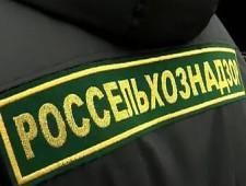 60 тонн белково-жирового продукта задержаны сотрудниками Смоленской таможни