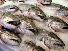 Ледяная глазурь не является первичной упаковкой мороженой рыбы