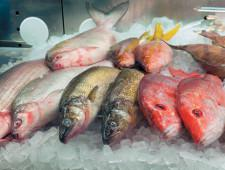 3,5 центнера лосося и трески не попали на столы Петербуржцев - Кримимнал - TKS.RU