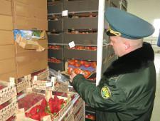 Продукты питания из Европы остановлены в Калининградской области