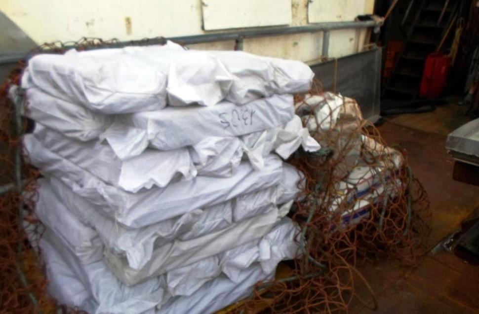 Сахалинские таможенники пресекли попытку незаконного вывоза 22 тонн сельди