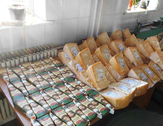 Белгородские таможенники предотвратили ввоз в Россию санкционного сыра - Криминал