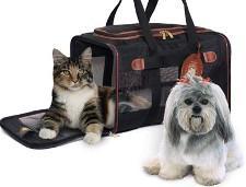 О вывозе с территории Российской Федерации собак и кошек