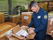 ФАС, ВАС и серый импорт - Обзор прессы - TKS.RU