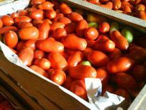 Пресечена реализация запрещенных к ввозу овощей