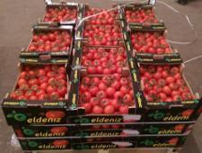 Самарские таможенники способствовали утилизации санкционных томатов - Кримимнал - TKS.RU