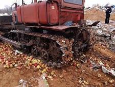 Под Смоленскои уничтожили 75 тонн санкционных фруктов