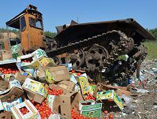 Турецкие томаты без документов уничтожены - Криминал
